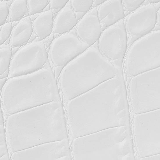 crocodile white